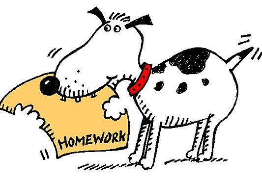Dog chewing homework