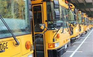 Bainbridge Island School District / Homepage