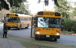 School buses at Ordway Elementary School