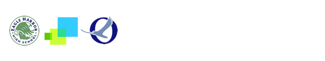 Commodore Options School